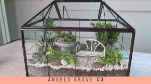 adorable succulent terrarium fairy