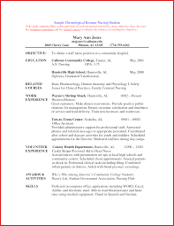 Luxury Volunteer Resume Resume Pdf