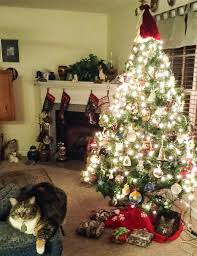 Best 25 Christmas Cats Ideas On Pinterest  Cat Christmas Cards Cat Themed Christmas Tree