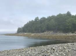 Bar Island Trail During Low Tide In Bar Harbor Maine Dq