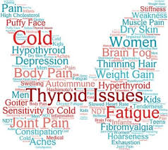 Indian Diet Plan For Hypothyroidism Weight Loss In