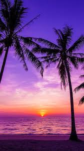 very cool and nice beach wallpaper beautiful sunsets