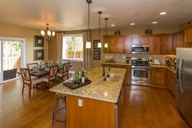 kitchen down lighting. Craftsman Kitchen With Designers Fountain 94030-ORB Oil Rubbed Bronze Single Light Down Lighting Mini I