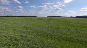 grass field from above. Flight Above Grass Field, Blue Cloudy Sky Stock Video Footage - Videoblocks Field From I