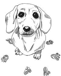 Dachshund Printable Coloring Pages Doxie Love Coloring Pages