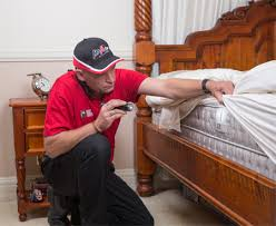 Get Rid Of Bed Bugs With Professional Pest Control