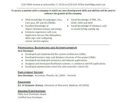 Basic Resume Sample Resume Sample Of Resume Basic Resume Examples College Students 92