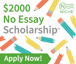 apply for student loans estudentloan niche 2000 no essay scholarship