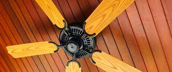 how to maintain your ceiling fans