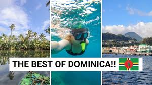All about the program and obtainment of the dominica passport. Things To Do In Dominica Tips For Visiting Dominica Vlog Youtube