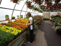 becoming a greenhouse gardener sounds especially good in our cur harsh february weather