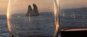 False Killer Whales Head Butting Nautilus Liveaboards Blog