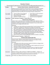 Claims Adjuster Resume Template Skills Are Needed Of Course In Every Job But For Claim Adjuster 20
