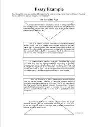 diagnostic essay format pages elephant diagnostic essay a  ideas of diagnostic essay sample in template huanyii com diagnostic essay format