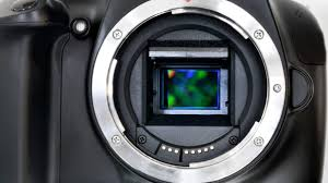 Faq What Are The Different Camera Sensor Sizes