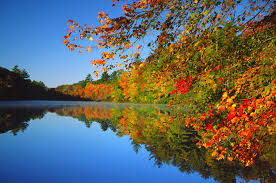 Image result for fall pics