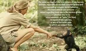 These Jane Goodall Quotes Will Inspire You To Save The World New Jane Goodall Quotes
