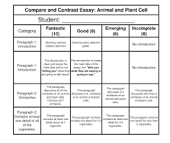 animal and plant cell diagrams diagram site