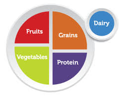 healthy food plate diagram. Modren Food CLICK A FOOD GROUP TO EXPLORE Intended Healthy Food Plate Diagram E