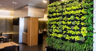 breathtaking living wall designs for
