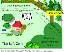 Image result for tick free yard pict