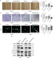 fept cys nanoparticles induce ros dependent cell toxicity, and aaladin industries elk point sd at Aaladin Model 3425 Wiring Diagram