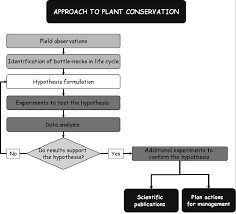 Plant Life Cycle Flow Chart Flowchart Of The Research Approach To Plant Conservation