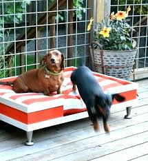 Elevated Outdoor Dog Bed Superjare Xlarge Outdoor Dog Bed Elevated ...