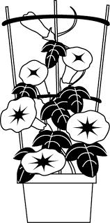 イラストポップの季節の素材 春夏秋冬の行事や風物のイラスト7月1 No27