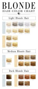 Blonde Hair Color Chart To Find