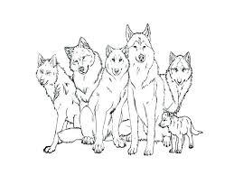Coloring Pages For Kids Pdf Teens Wolf Page Wolves Pictures Free