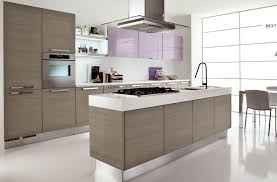 Contemporary Kitchen With Flat Panel Cabinets By David Kopke Contemporary Kitchen Ideas
