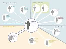 stakeholders in healthcare shangyanyan li chicago portfolio issac