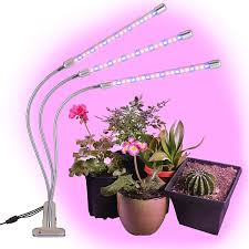 House Plant Led Grow Light Brite Labs Led Grow Lights For Indoor Plants And Seedlings Triple Head Plant Growing Lamps With 60 Full Spectrum Bulbs Programmable Timer Allows