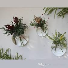 glass air plants holders wall glass
