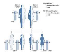 Genetic Inheritance Canadian Hemochromatosis Society