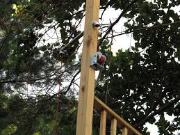 treehouse pulley system