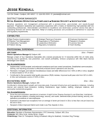 Bank Resume Template Custom Sample Banking Resumes Resume Samples Resume Templates For Bankers