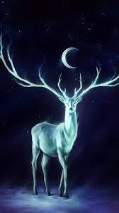 とても長い鹿の角と月がかっこいい画像