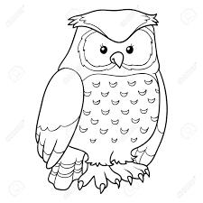coloring book owl stock vector 38420004
