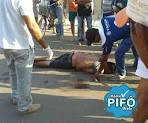 imagem de Madeiro Piauí n-7