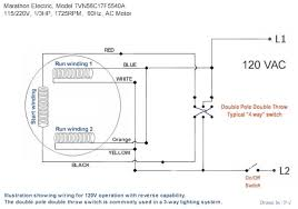 l1 l2 wiring 120v motor l1 image wiring diagram wiring diagram of electric motors wiring image on l1 l2 wiring 120v motor