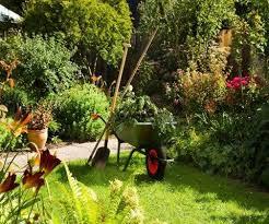 garden maintenance gardening tips