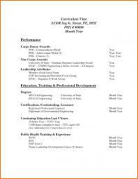 Template 6 Professional Curriculum Vitae Format Sample Budget
