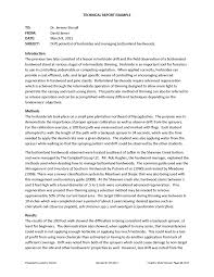 cover letter example of a report essay example of a health history cover letter example of a report essay example fullexample of a report essay large size