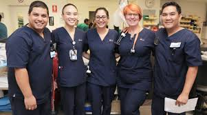 The spending per capita for health care in the us amounts to $9. New Report Western Sydney S Emergency Department Performance On The Rise Thepulse Org Au
