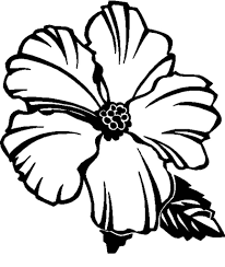 Hibiscus Coloring Pages   Flower Coloring Pages   Pinterest ...