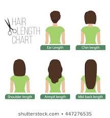 Hair Length Chart Women