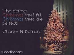 Christmas Tree Quotes Unique Christmas Tree Quotes And Sayings Pelfusion