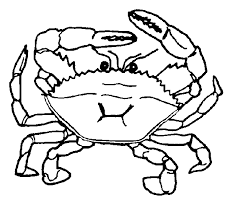 Small Picture Free printable Crab coloring page Crab free printable coloring